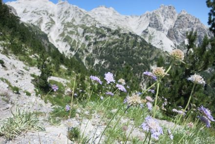Trail to Valbone Via Dinarica